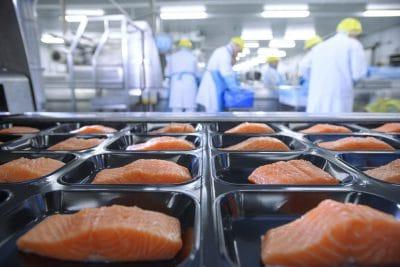 voedselveiligheid-zalm